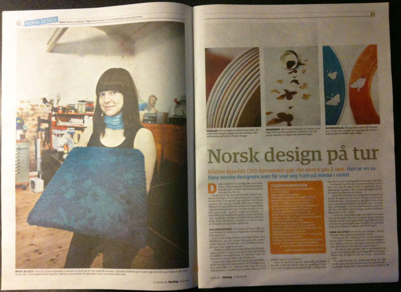 dagbladet_jan_2011